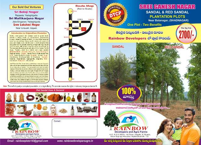 DTCP Plots with Red sandal Plantations for sale near  Hyd-Bangalore NH, Balanagar,TS | free Classified | Free Advertising | free classified ads